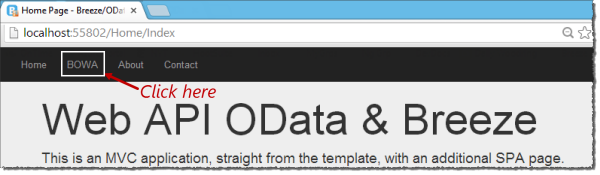 Web API OData Sample in action
